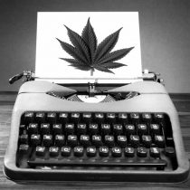 How to become a marijuana reviewer / critic